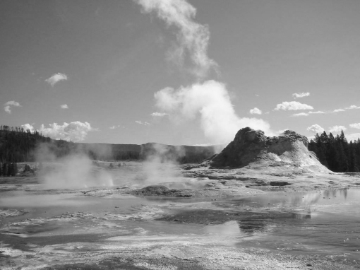 Steamy landscape at Yellowstone
