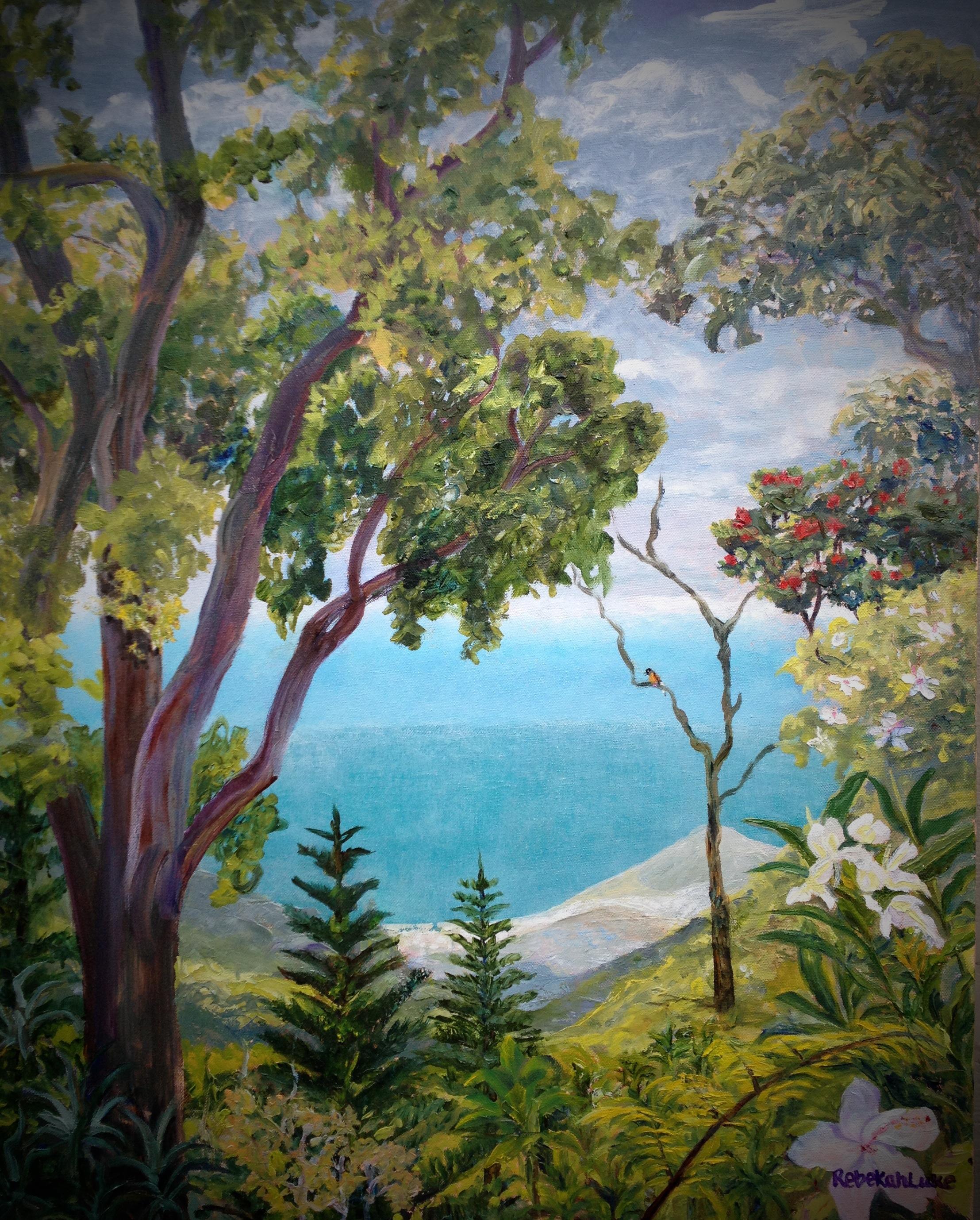 Tantalus View from Pu'u 'Ōhiʻa - 2014 - Robert Tam Collection