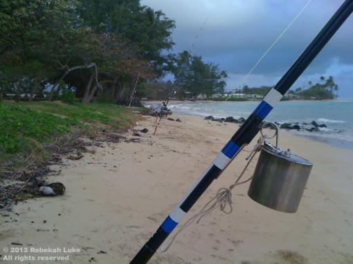 Fishing pole ©2013Rebekah Luke